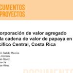 Incorporación de valor agregado en la cadena de valor de papaya en el Pacífico Central, Costa Rica